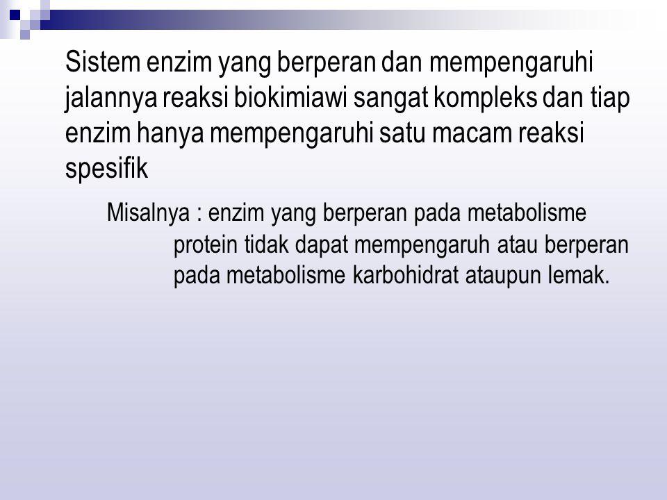 Kofaktor + Apoenzim  holoenzim non protein ProteinAktif (tidak aktif)(tidak aktif) Bagian rantai polipeptida dari beberapa enzim mengandung kofaktor yang disebut APOENZIM Kofaktor kecuali apoenzim mempunyai aktivitas enzimatiknya sendiri Sisi katalitik kompleks apoenzim-kofaktor disebut dengan holoenzim