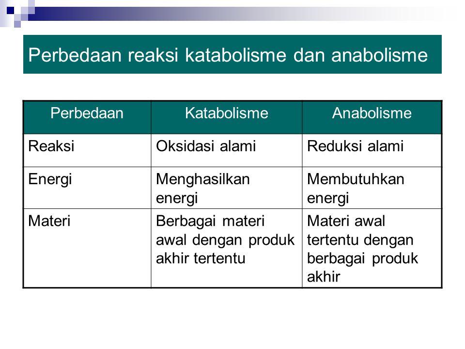 Perbedaan reaksi katabolisme dan anabolisme PerbedaanKatabolismeAnabolisme ReaksiOksidasi alamiReduksi alami EnergiMenghasilkan energi Membutuhkan energi MateriBerbagai materi awal dengan produk akhir tertentu Materi awal tertentu dengan berbagai produk akhir