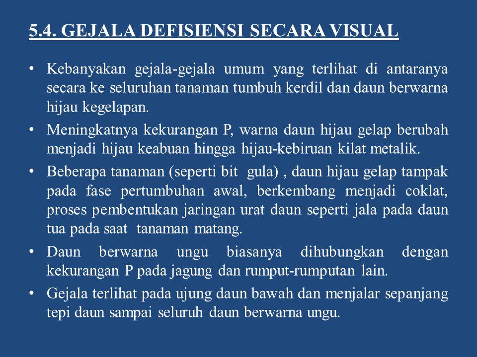 5.4. GEJALA DEFISIENSI SECARA VISUAL Kebanyakan gejala-gejala umum yang terlihat di antaranya secara ke seluruhan tanaman tumbuh kerdil dan daun berwa
