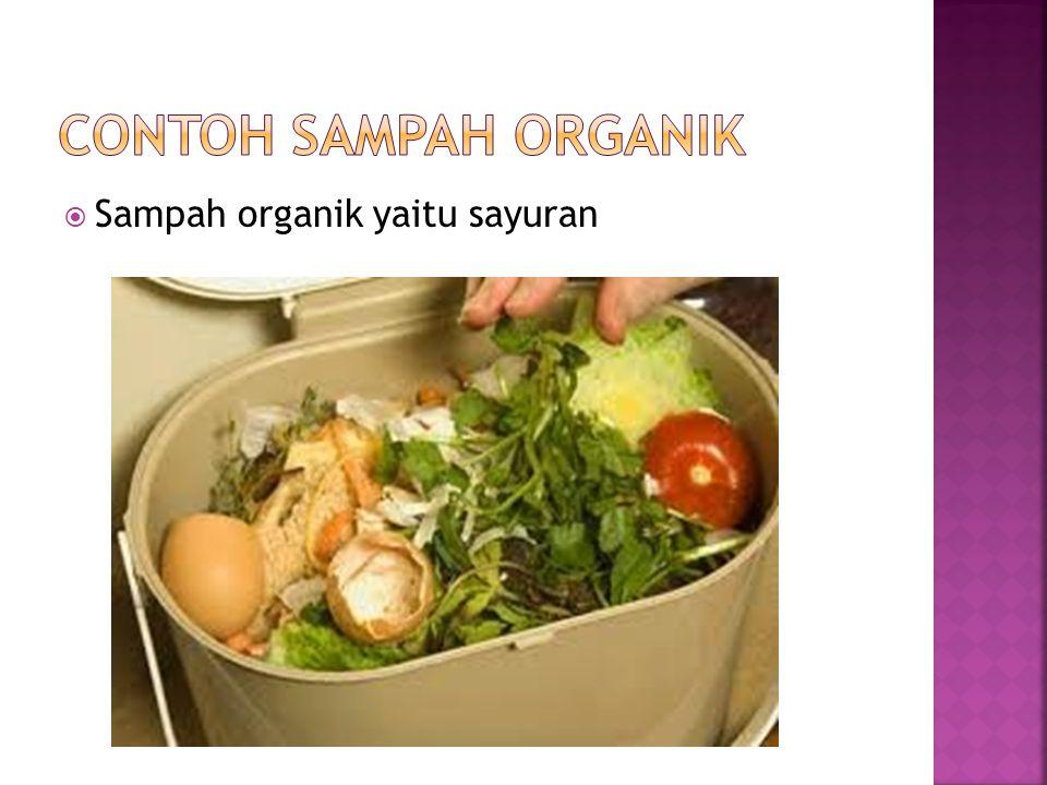  Sampah organik yaitu sayuran