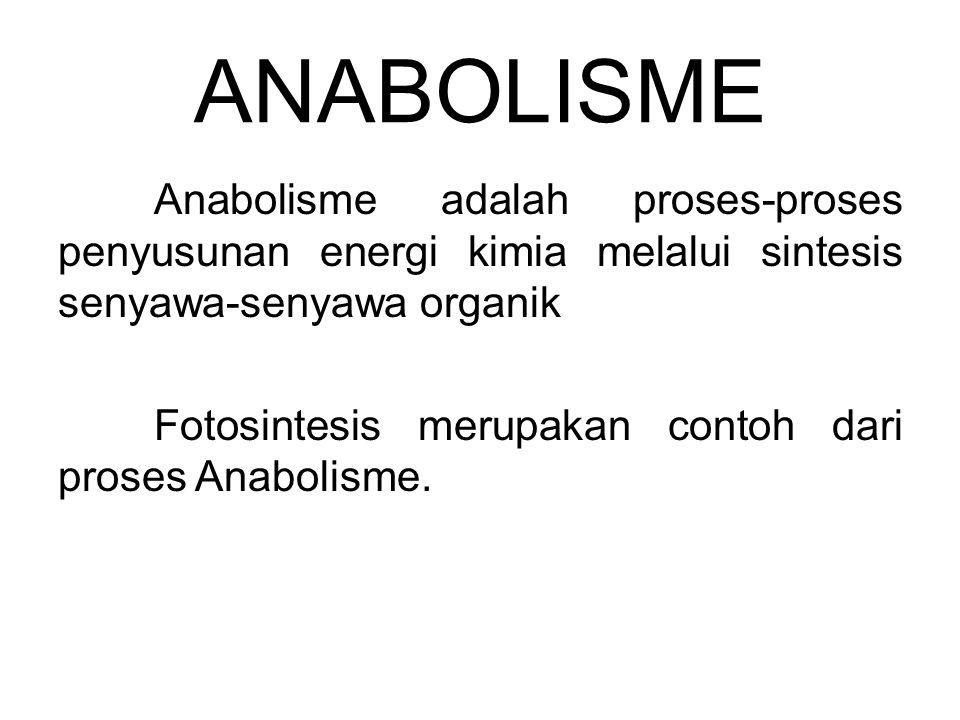 ANABOLISME Anabolisme adalah proses-proses penyusunan energi kimia melalui sintesis senyawa-senyawa organik Fotosintesis merupakan contoh dari proses