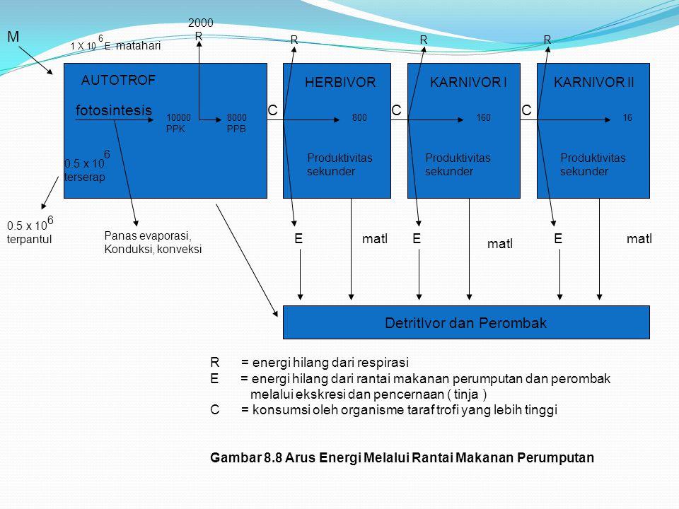 AUTOTROF fotosintesis 0.5 x 10 terserap 6 10000 PPK 8000 PPB 1 X 10 E. matahari M 6 0.5 x 10 terpantul 6 Panas evaporasi, Konduksi, konveksi 2000 R HE