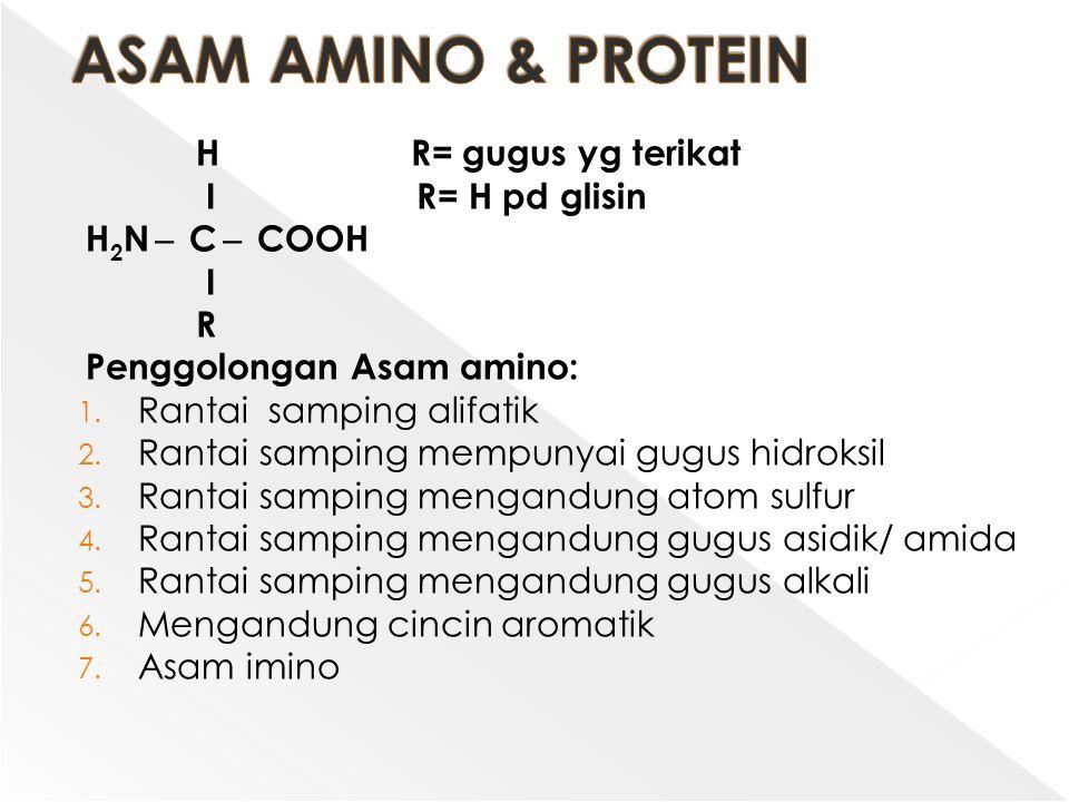 H R= gugus yg terikat Ι R= H pd glisin H 2 N ̶ C ̶ COOH Ι R Penggolongan Asam amino: 1. Rantai samping alifatik 2. Rantai samping mempunyai gugus hidr