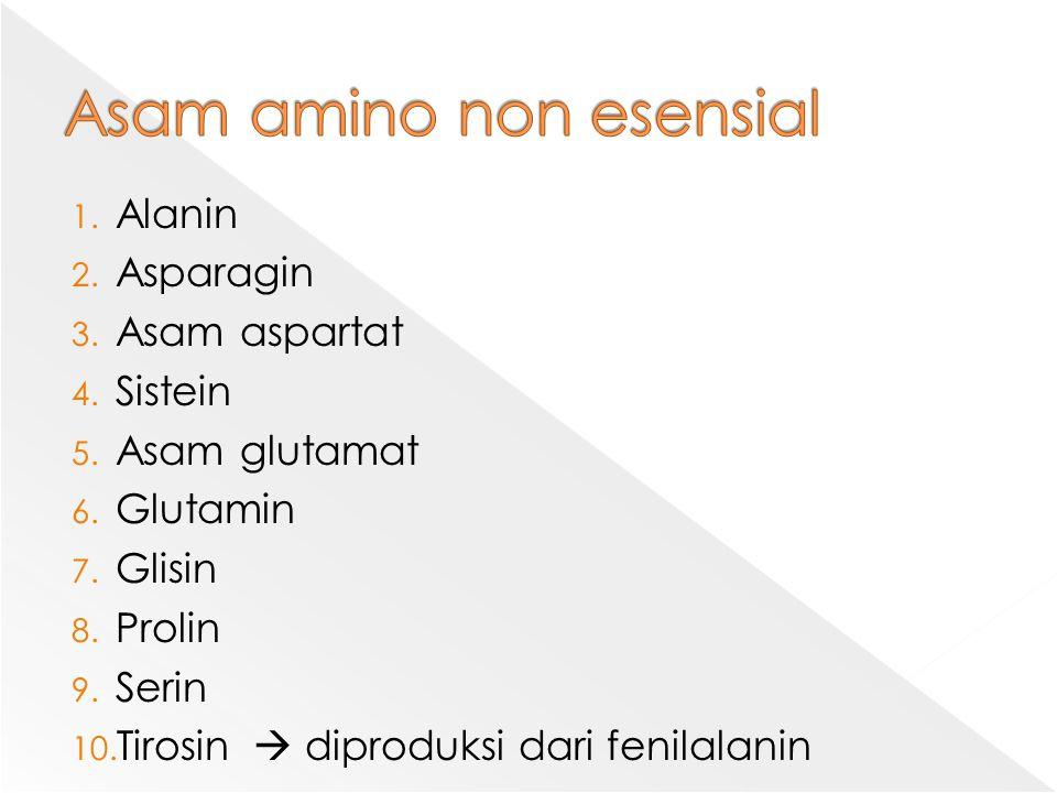 1. Alanin 2. Asparagin 3. Asam aspartat 4. Sistein 5. Asam glutamat 6. Glutamin 7. Glisin 8. Prolin 9. Serin 10. Tirosin  diproduksi dari fenilalanin