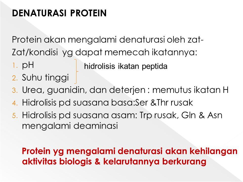 DENATURASI PROTEIN Protein akan mengalami denaturasi oleh zat- Zat/kondisi yg dapat memecah ikatannya: 1. pH 2. Suhu tinggi 3. Urea, guanidin, dan det