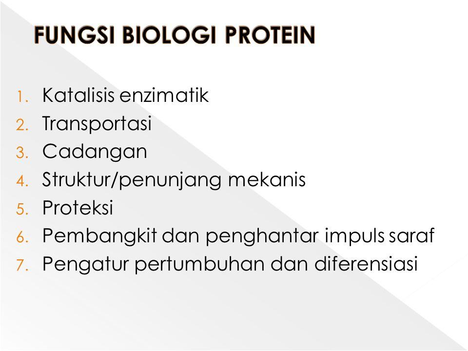 1. Katalisis enzimatik 2. Transportasi 3. Cadangan 4. Struktur/penunjang mekanis 5. Proteksi 6. Pembangkit dan penghantar impuls saraf 7. Pengatur per