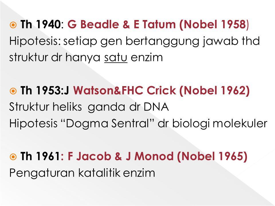  Th 1940 : G Beadle & E Tatum (Nobel 1958 ) Hipotesis: setiap gen bertanggung jawab thd struktur dr hanya satu enzim  Th 1953:J Watson&FHC Crick (No
