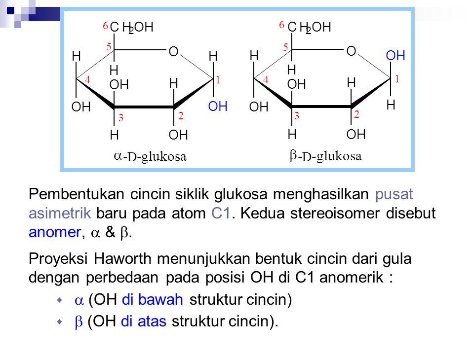 Pembentukan cincin siklik glukosa menghasilkan pusat asimetrik baru pada atom C1. Kedua stereoisomer disebut anomer,  & . Proyeksi Haworth menunjukk