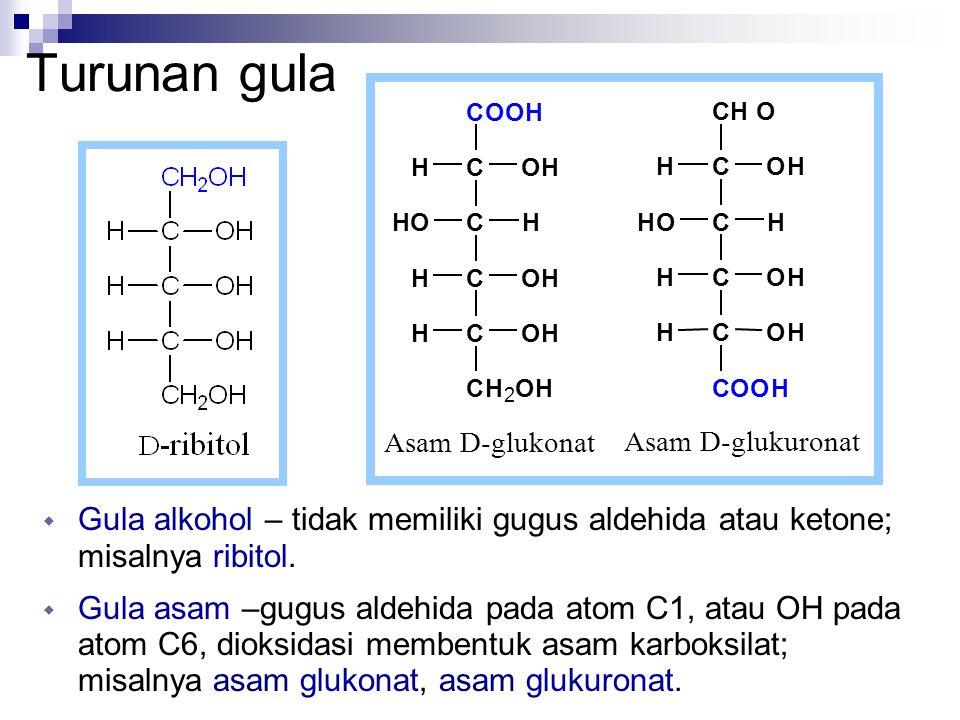 Turunan gula  Gula alkohol – tidak memiliki gugus aldehida atau ketone; misalnya ribitol.  Gula asam –gugus aldehida pada atom C1, atau OH pada atom