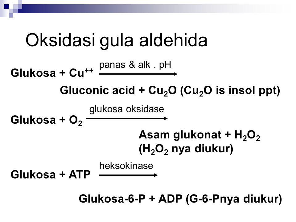 Glukosa + Cu ++ Gluconic acid + Cu 2 O (Cu 2 O is insol ppt) Glukosa + O 2 Asam glukonat + H 2 O 2 (H 2 O 2 nya diukur) Glukosa + ATP Glukosa-6-P + AD