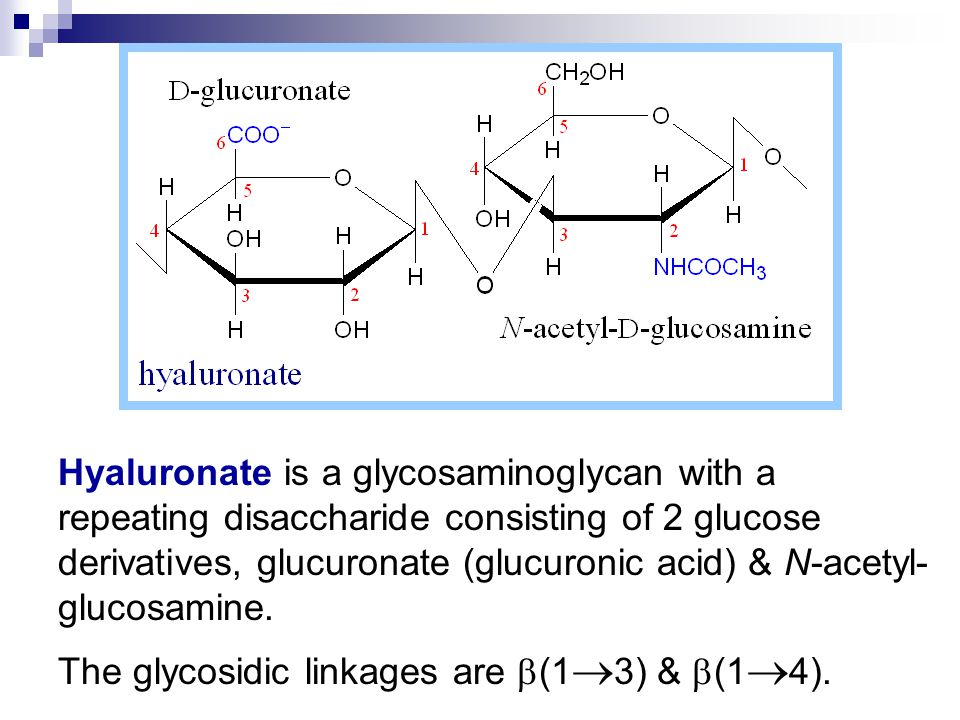 Hyaluronate is a glycosaminoglycan with a repeating disaccharide consisting of 2 glucose derivatives, glucuronate (glucuronic acid) & N-acetyl- glucosamine.