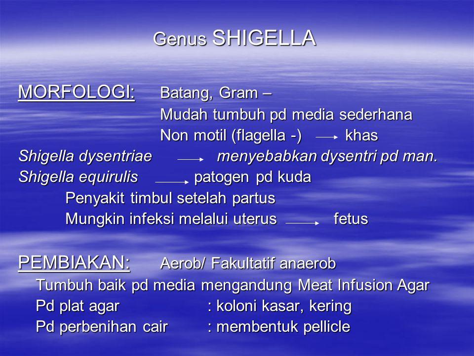 SALMONELLA ANATIS Menyebabkan penyakit pd anak itik dg.