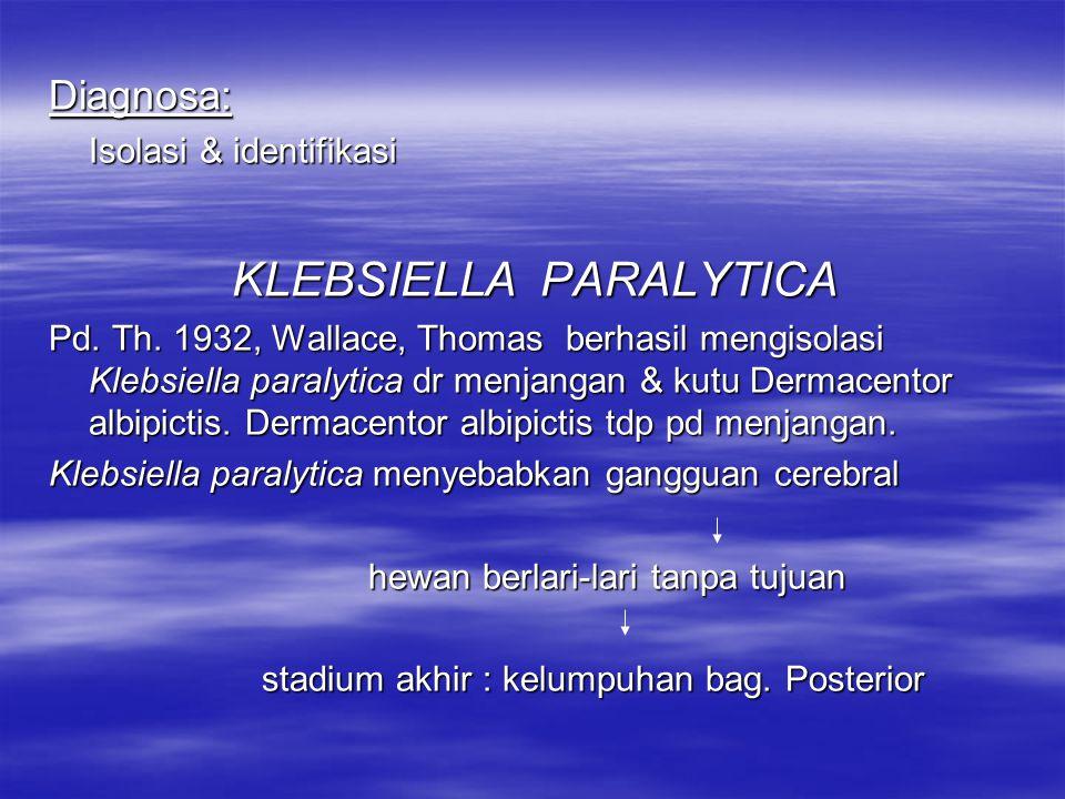 Struktur antigen & toxin: Mengadakan kros aglutinasi dg strain Klebsiella pneumonia & Aerobacter aerogenes Keganasan: Klebsiella genitalium septicaemia pd cavia,kelinci & Klebsiella genitalium septicaemia pd cavia,kelinci & menyebabkan kematian (12-24 j) Penyuntikan i.uterin dg suspensi pupukan Klebsiella geni- tallium pd kuda betina cervicitis, metritis dg eksu- dat purulent Pd infeksi alami kuda betinakuman dijumpai pd cervic, uterus, tuba falopii & lgl inguinalis Kekebalan: tidak ada
