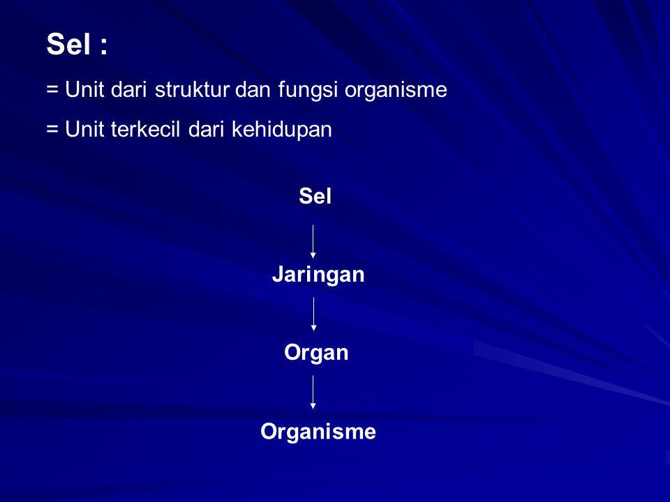 Sel : = Unit dari struktur dan fungsi organisme = Unit terkecil dari kehidupan Sel Jaringan Organ Organisme