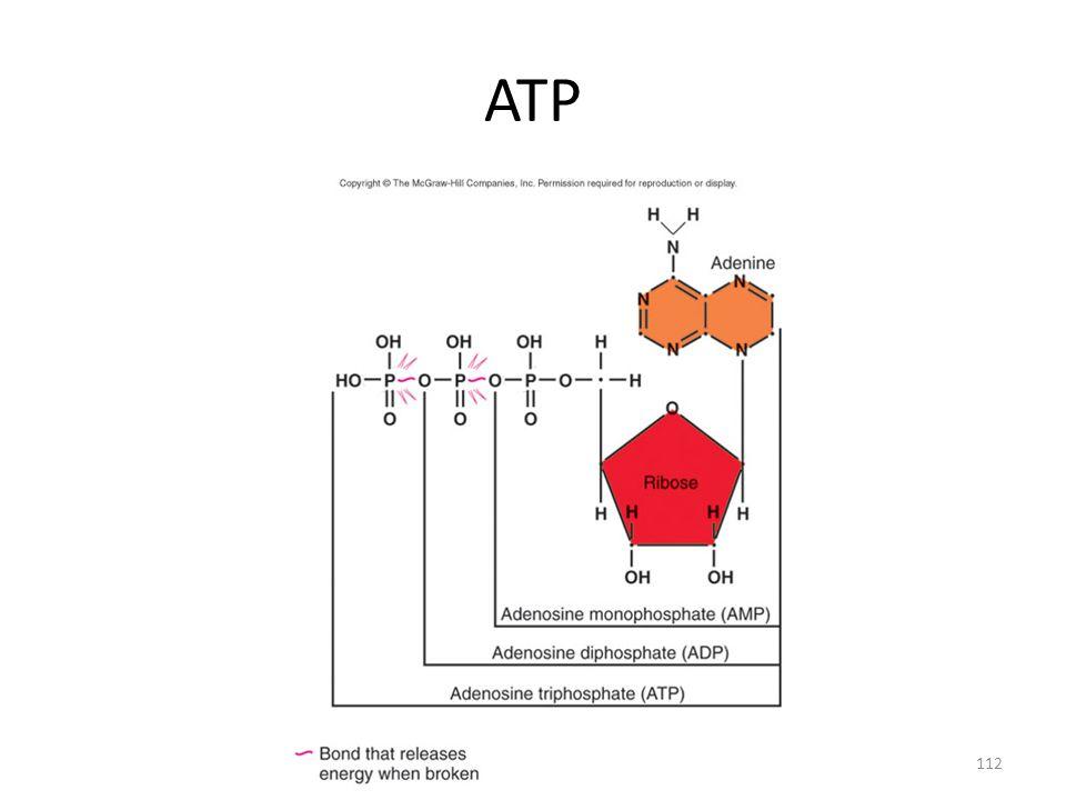 112 ATP