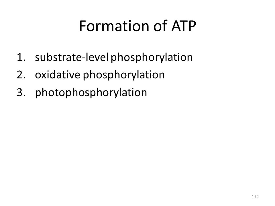 114 Formation of ATP 1.substrate-level phosphorylation 2.oxidative phosphorylation 3.photophosphorylation