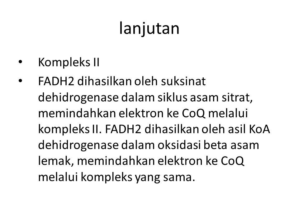 lanjutan Kompleks II FADH2 dihasilkan oleh suksinat dehidrogenase dalam siklus asam sitrat, memindahkan elektron ke CoQ melalui kompleks II. FADH2 dih