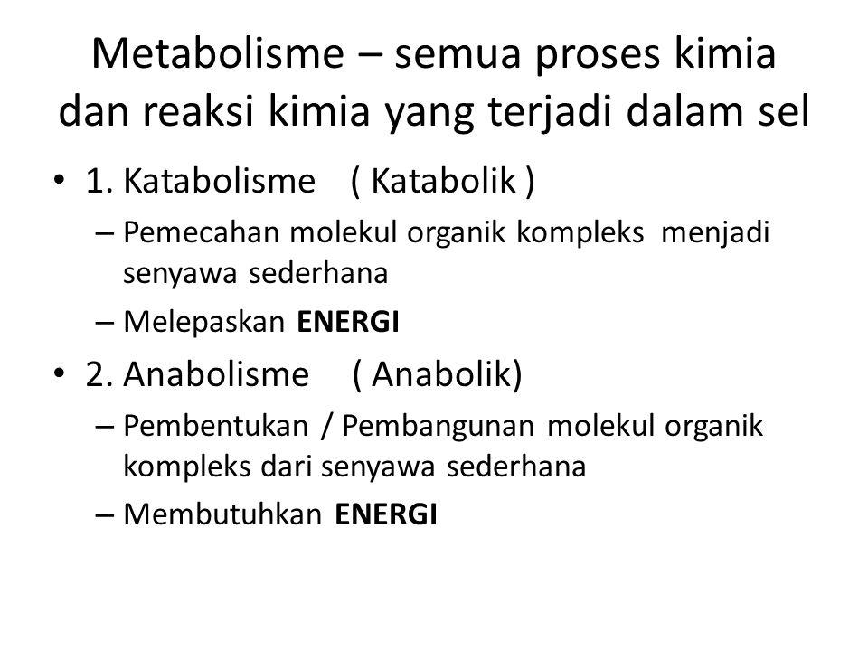 Metabolisme – semua proses kimia dan reaksi kimia yang terjadi dalam sel 1. Katabolisme ( Katabolik ) – Pemecahan molekul organik kompleks menjadi sen