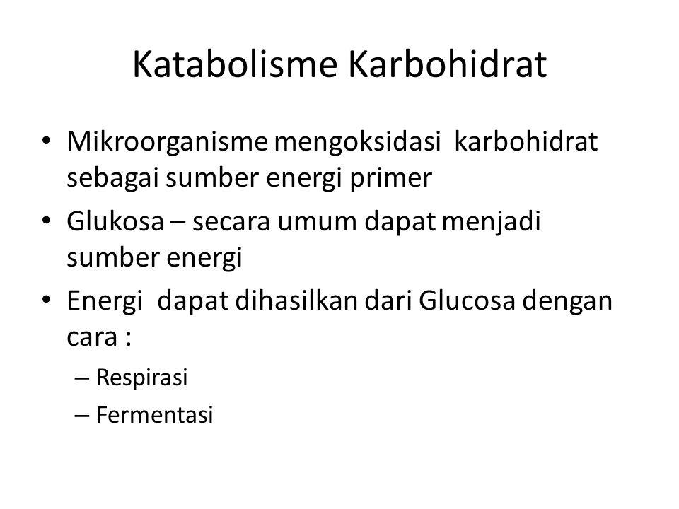 Katabolisme Karbohidrat Mikroorganisme mengoksidasi karbohidrat sebagai sumber energi primer Glukosa – secara umum dapat menjadi sumber energi Energi