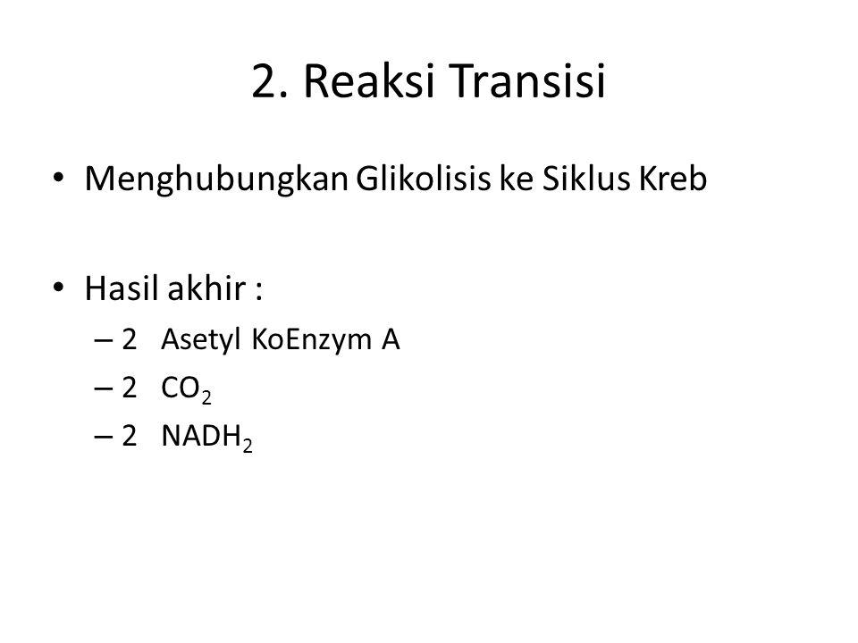 2. Reaksi Transisi Menghubungkan Glikolisis ke Siklus Kreb Hasil akhir : – 2 Asetyl KoEnzym A – 2 CO 2 – 2 NADH 2