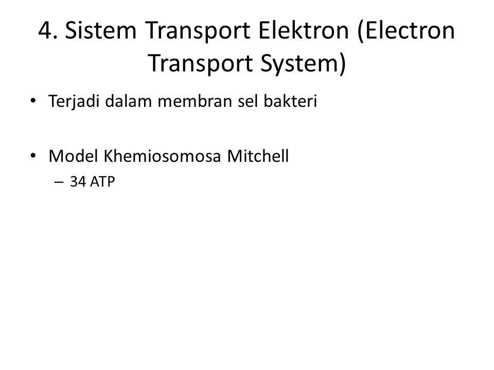 4. Sistem Transport Elektron (Electron Transport System) Terjadi dalam membran sel bakteri Model Khemiosomosa Mitchell – 34 ATP