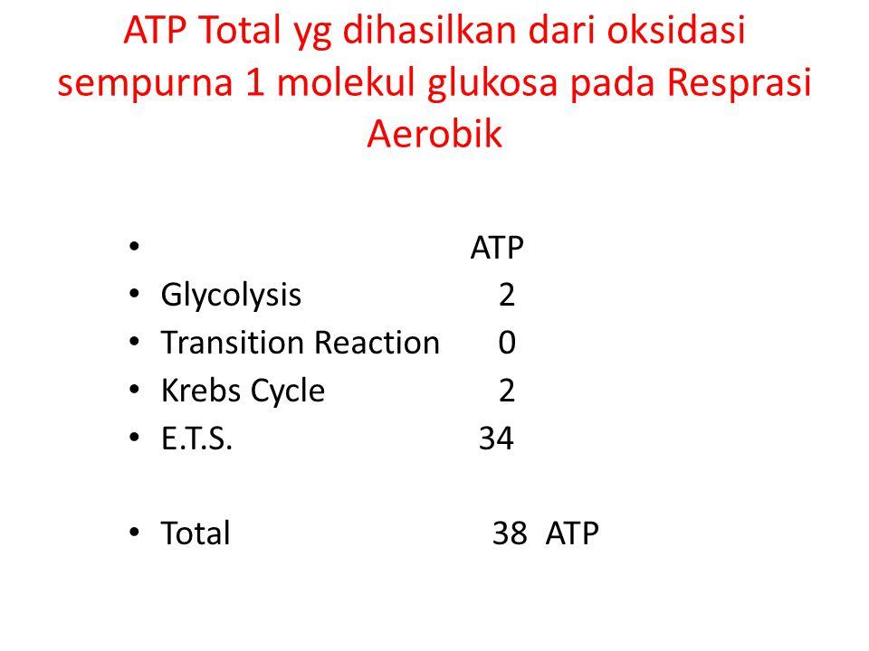 ATP Total yg dihasilkan dari oksidasi sempurna 1 molekul glukosa pada Resprasi Aerobik ATP Glycolysis 2 Transition Reaction 0 Krebs Cycle 2 E.T.S. 34