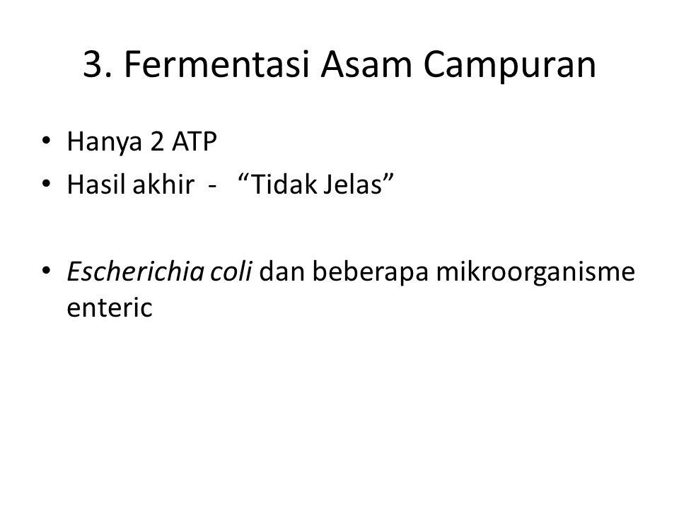 """3. Fermentasi Asam Campuran Hanya 2 ATP Hasil akhir - """"Tidak Jelas"""" Escherichia coli dan beberapa mikroorganisme enteric"""