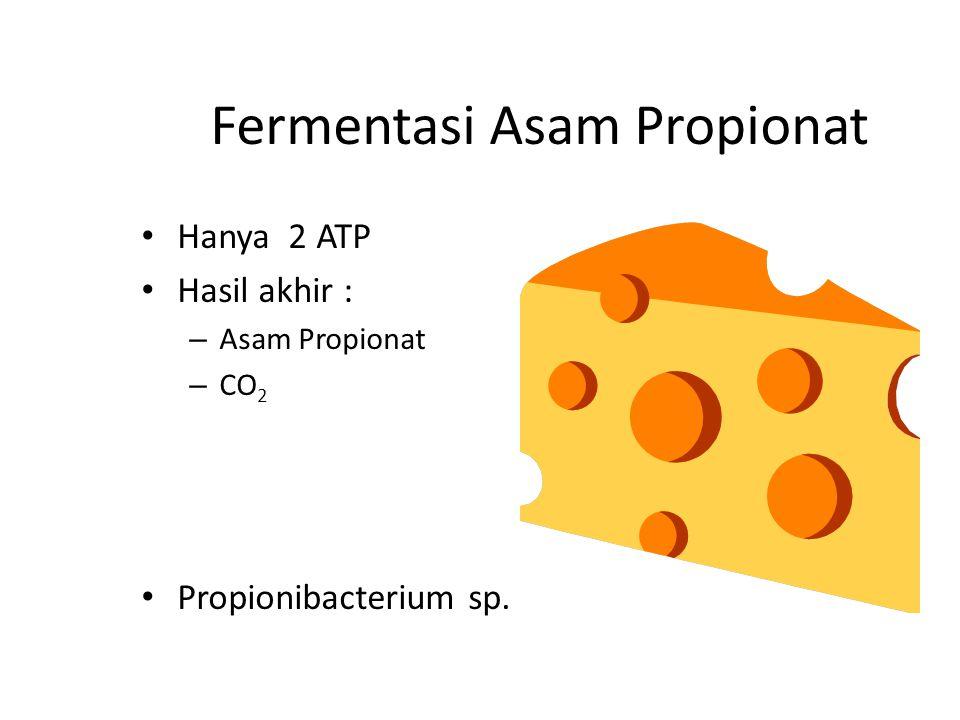Fermentasi Asam Propionat Hanya 2 ATP Hasil akhir : – Asam Propionat – CO 2 Propionibacterium sp.