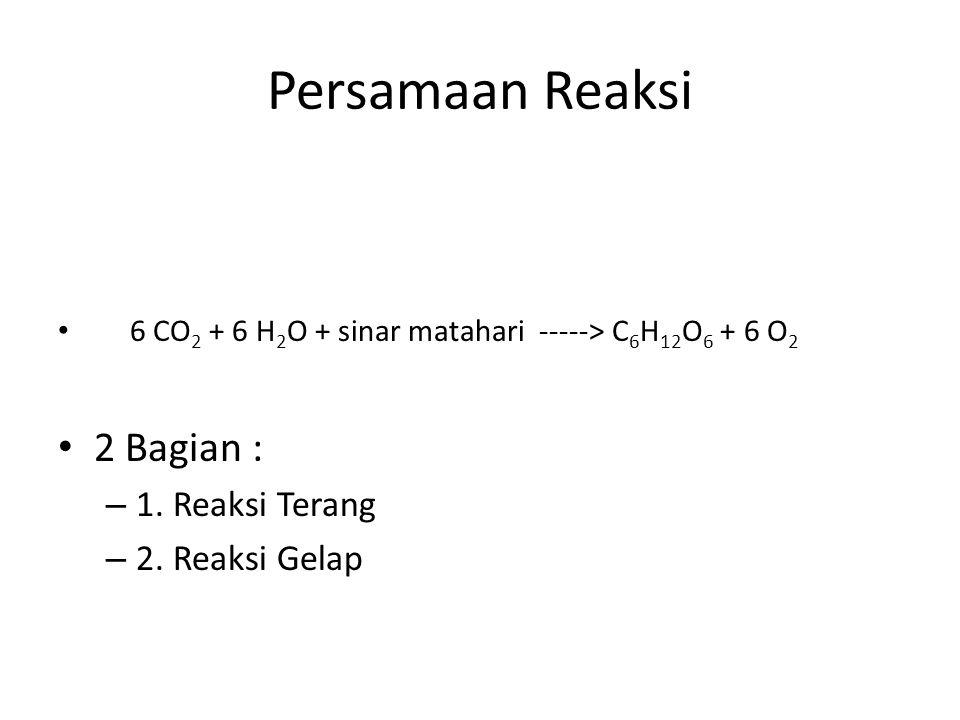 Persamaan Reaksi 6 CO 2 + 6 H 2 O + sinar matahari -----> C 6 H 12 O 6 + 6 O 2 2 Bagian : – 1. Reaksi Terang – 2. Reaksi Gelap