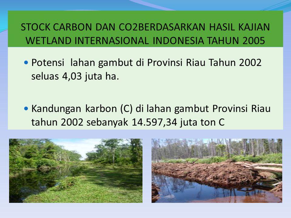STOCK CARBON DAN CO2BERDASARKAN HASIL KAJIAN WETLAND INTERNASIONAL INDONESIA TAHUN 2005 Potensi lahan gambut di Provinsi Riau Tahun 2002 seluas 4,03 juta ha.