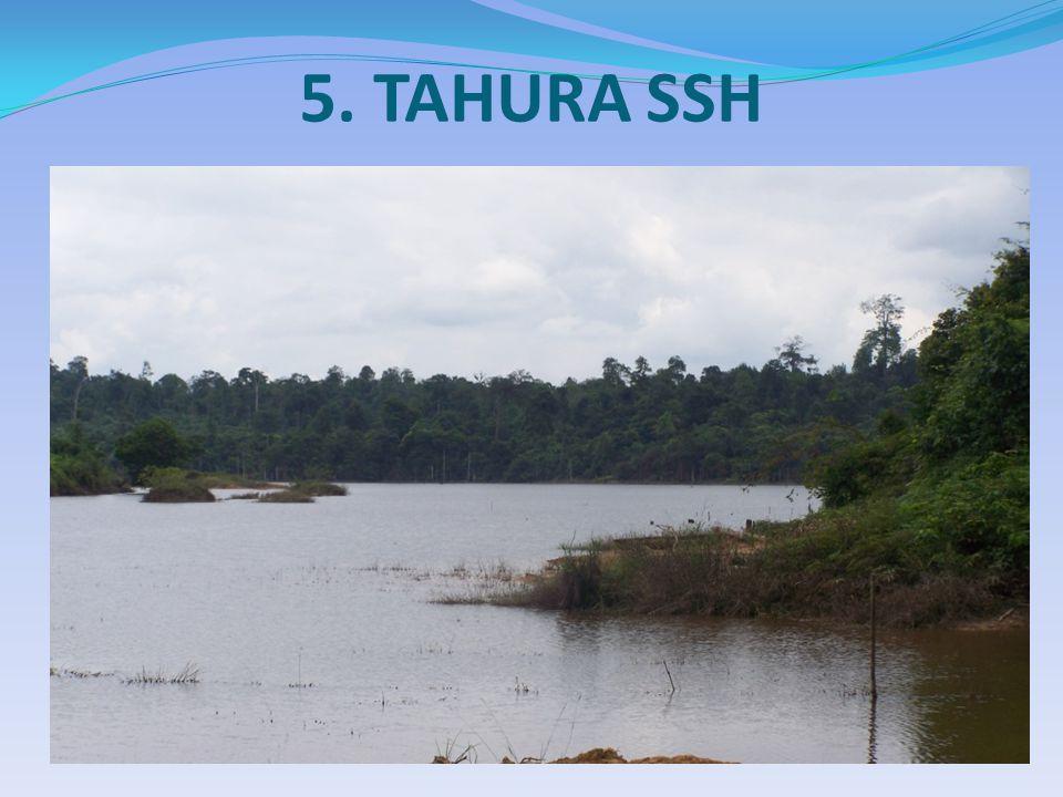 5. TAHURA SSH