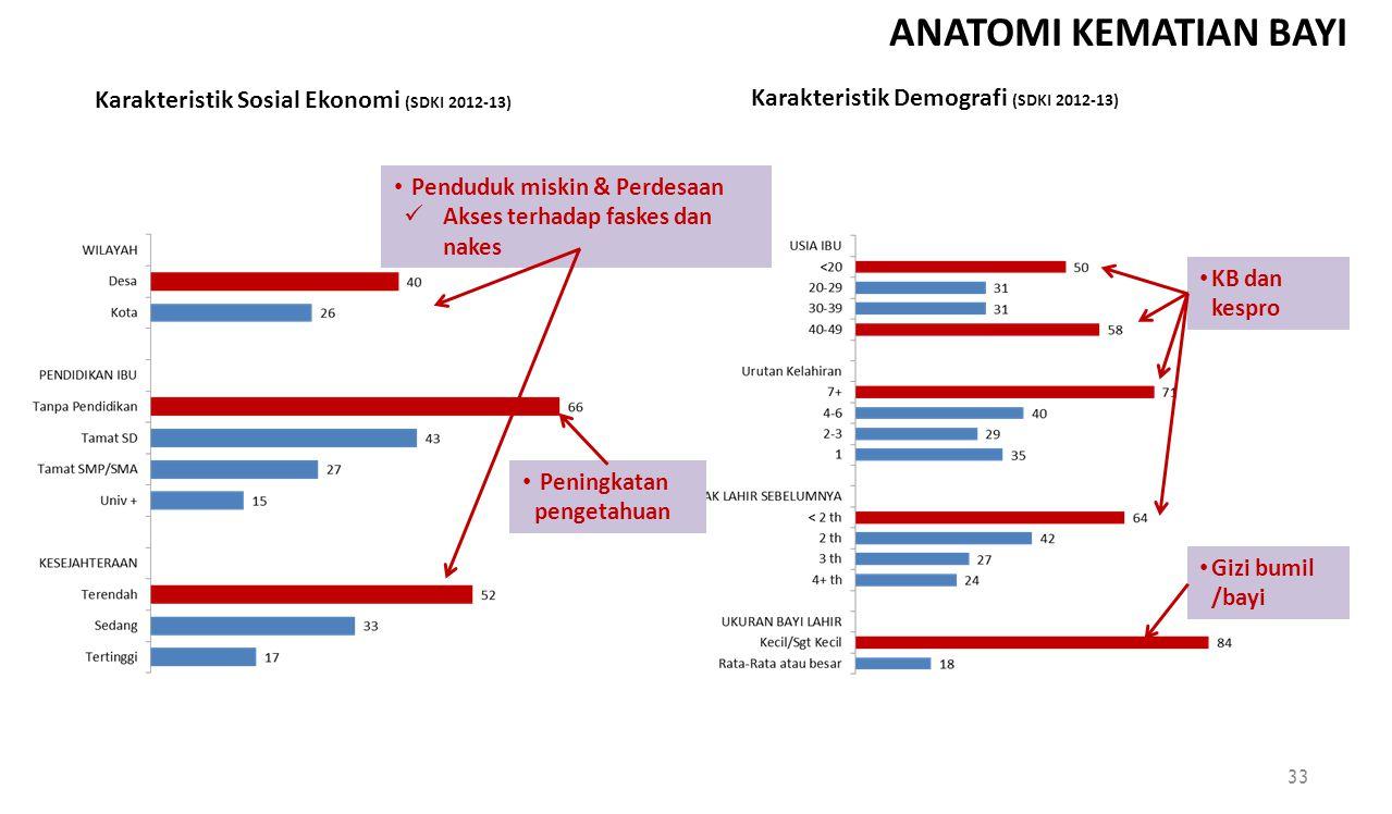 ANATOMI KEMATIAN BAYI Karakteristik Sosial Ekonomi (SDKI 2012-13) Karakteristik Demografi (SDKI 2012-13) Penduduk miskin & Perdesaan Akses terhadap fa