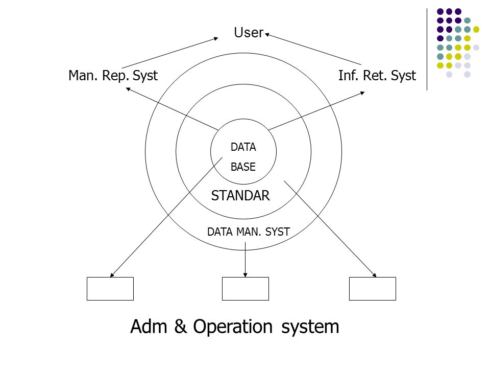 User DATA BASE STANDAR DATA MAN. SYST Man. Rep. SystInf. Ret. Syst Adm & Operation system