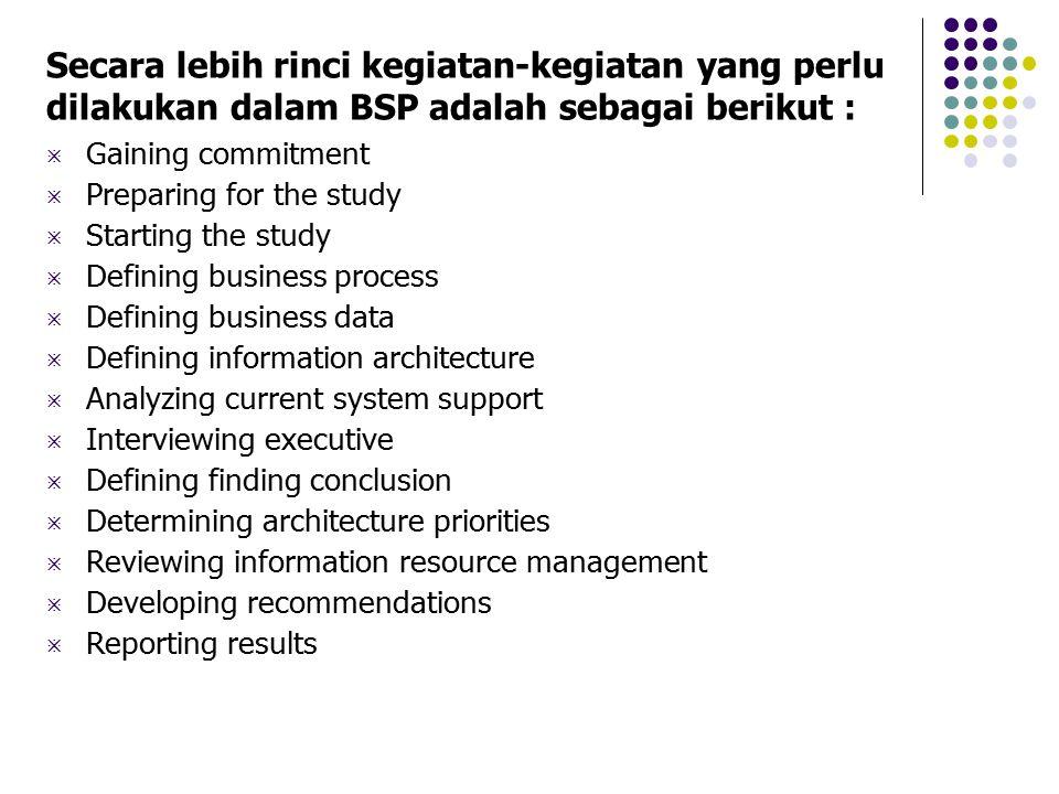 Secara lebih rinci kegiatan-kegiatan yang perlu dilakukan dalam BSP adalah sebagai berikut :  Gaining commitment  Preparing for the study  Starting
