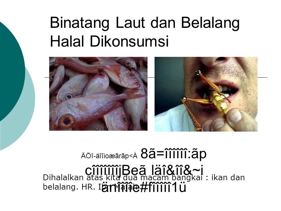 Haram karena Dilarang Membunuhnya  Semut  Tawon  Burung Teguk-teguk  Burung Suradi
