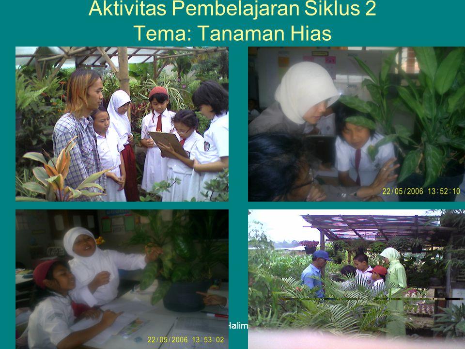 Lely Halimah Aktivitas Pembelajaran Siklus 2 Tema: Tanaman Hias