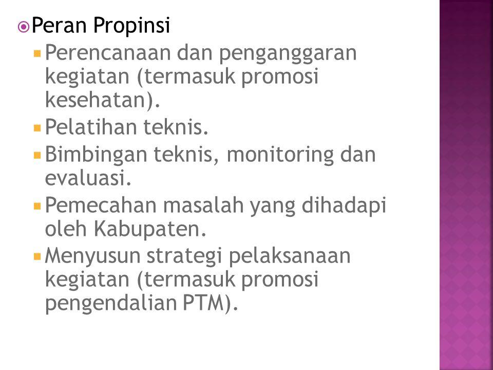  Peran Propinsi  Perencanaan dan penganggaran kegiatan (termasuk promosi kesehatan).  Pelatihan teknis.  Bimbingan teknis, monitoring dan evaluasi