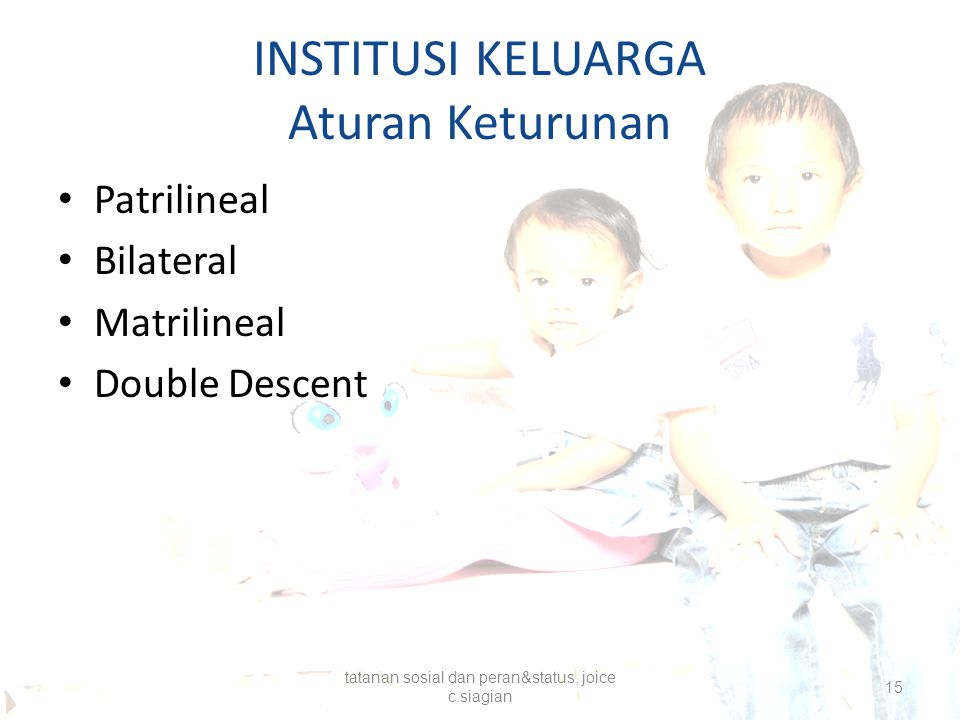 INSTITUSI KELUARGA Aturan Keturunan Patrilineal Bilateral Matrilineal Double Descent tatanan sosial dan peran&status, joice c.siagian 15