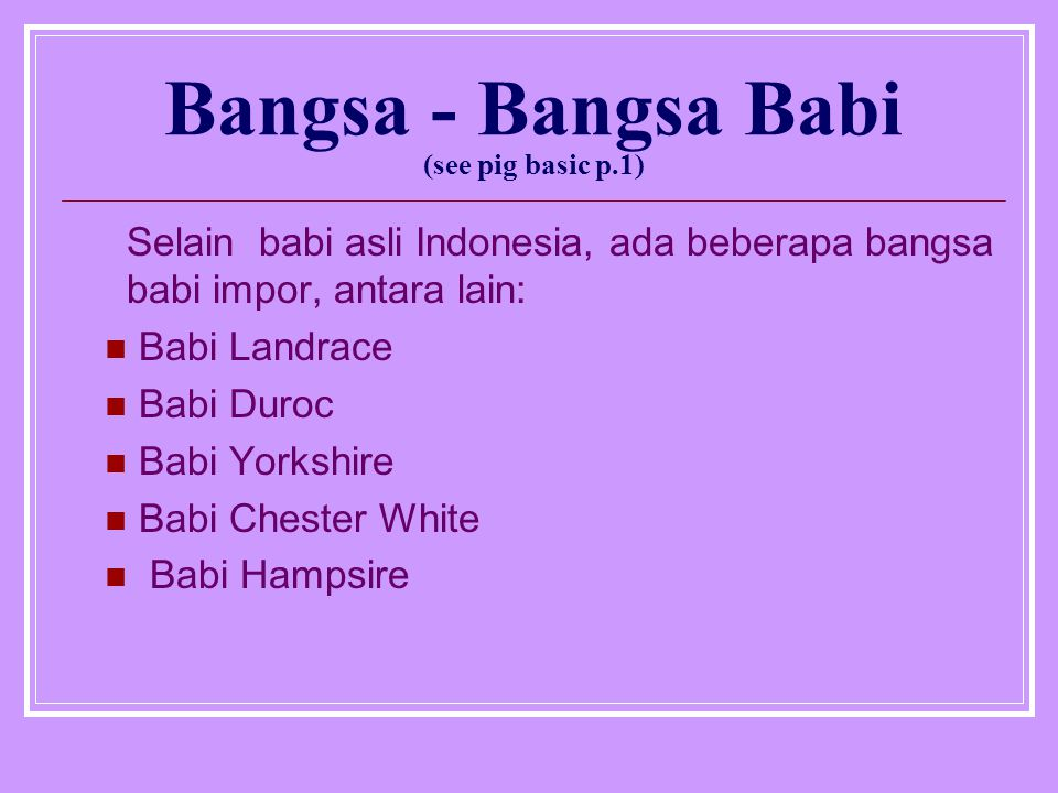 Bangsa - Bangsa Babi (see pig basic p.1) Selain babi asli Indonesia, ada beberapa bangsa babi impor, antara lain: Babi Landrace Babi Duroc Babi Yorkshire Babi Chester White Babi Hampsire
