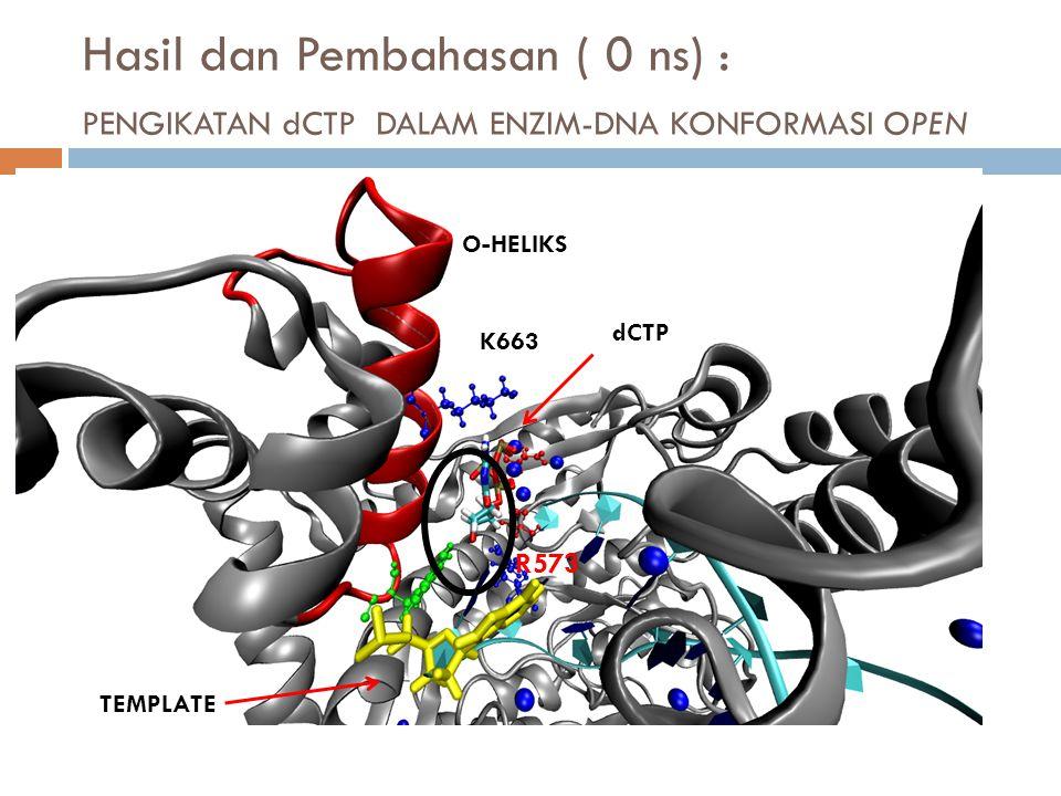 Hasil dan Pembahasan ( 0 ns) : PENGIKATAN dCTP DALAM ENZIM-DNA KONFORMASI OPEN K663 R573 dCTP TEMPLATE O-HELIKS