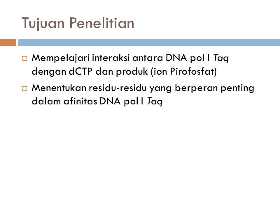 Tujuan Penelitian  Mempelajari interaksi antara DNA pol I Taq dengan dCTP dan produk (ion Pirofosfat)  Menentukan residu-residu yang berperan penting dalam afinitas DNA pol I Taq