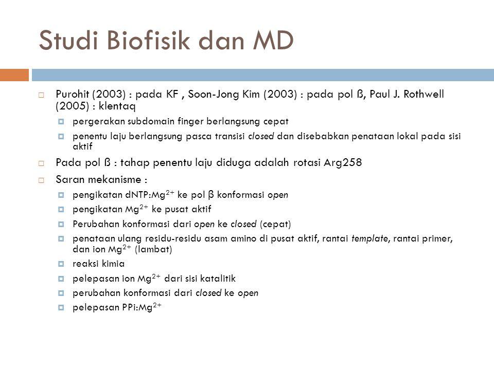 Studi Biofisik dan MD  Purohit (2003) : pada KF, Soon-Jong Kim (2003) : pada pol ß, Paul J.