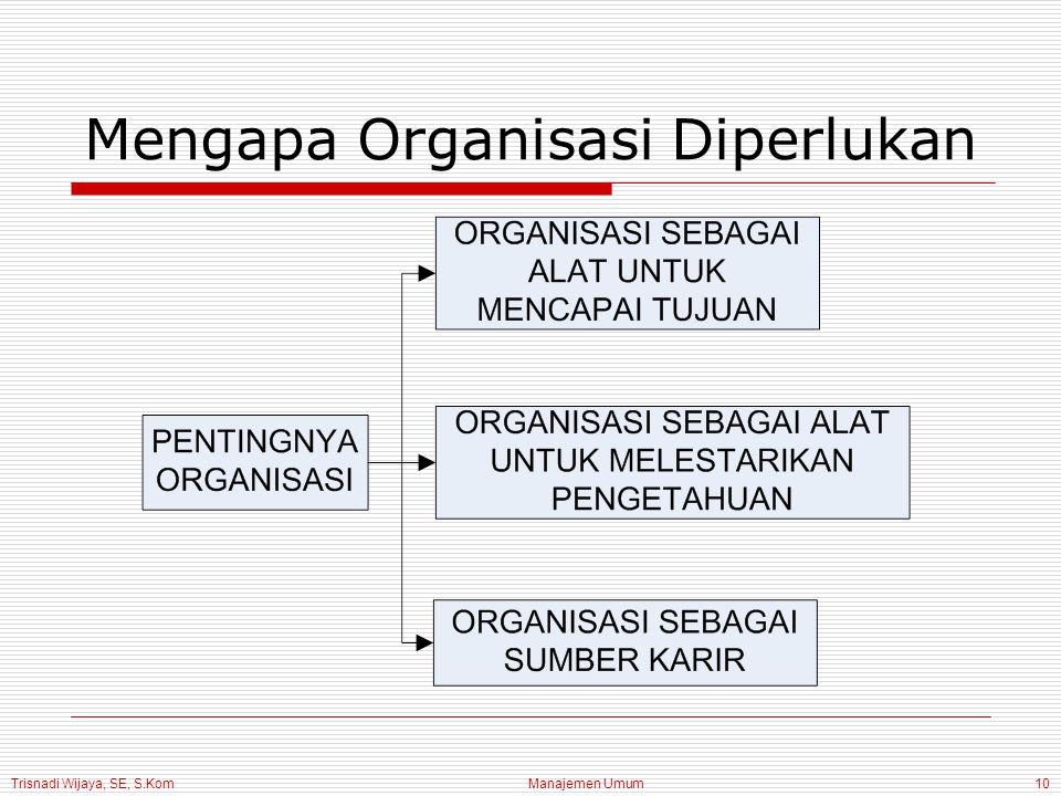 Trisnadi Wijaya, SE, S.Kom Manajemen Umum10 Mengapa Organisasi Diperlukan