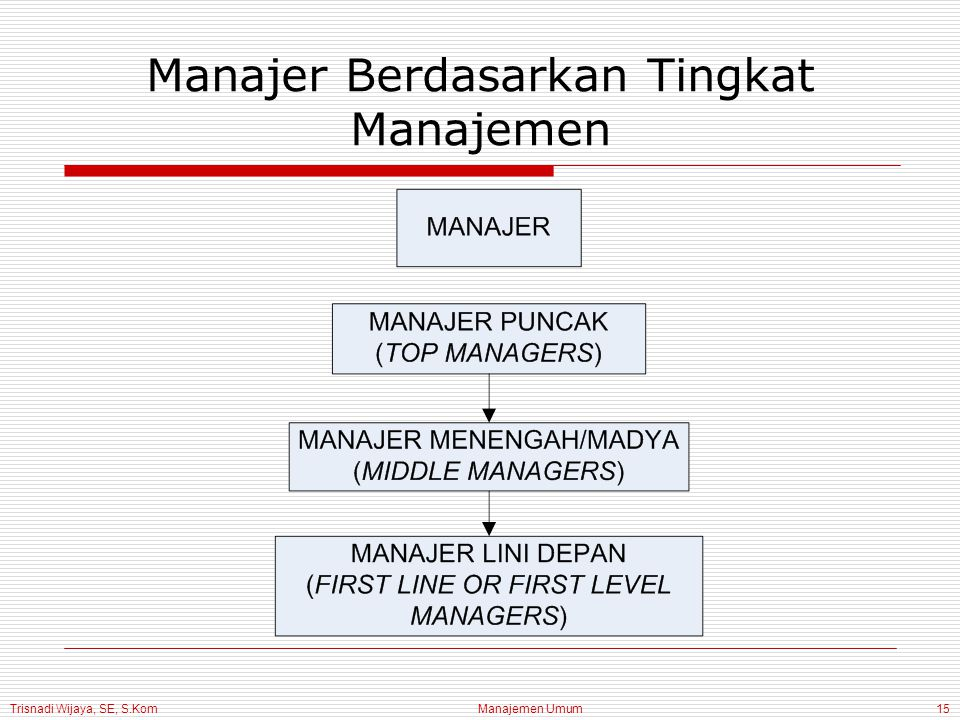 Trisnadi Wijaya, SE, S.Kom Manajemen Umum15 Manajer Berdasarkan Tingkat Manajemen