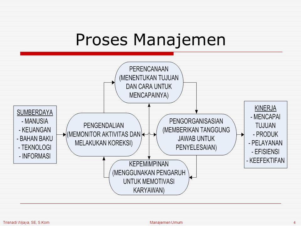 Trisnadi Wijaya, SE, S.Kom Manajemen Umum25 Kinerja Organisasi