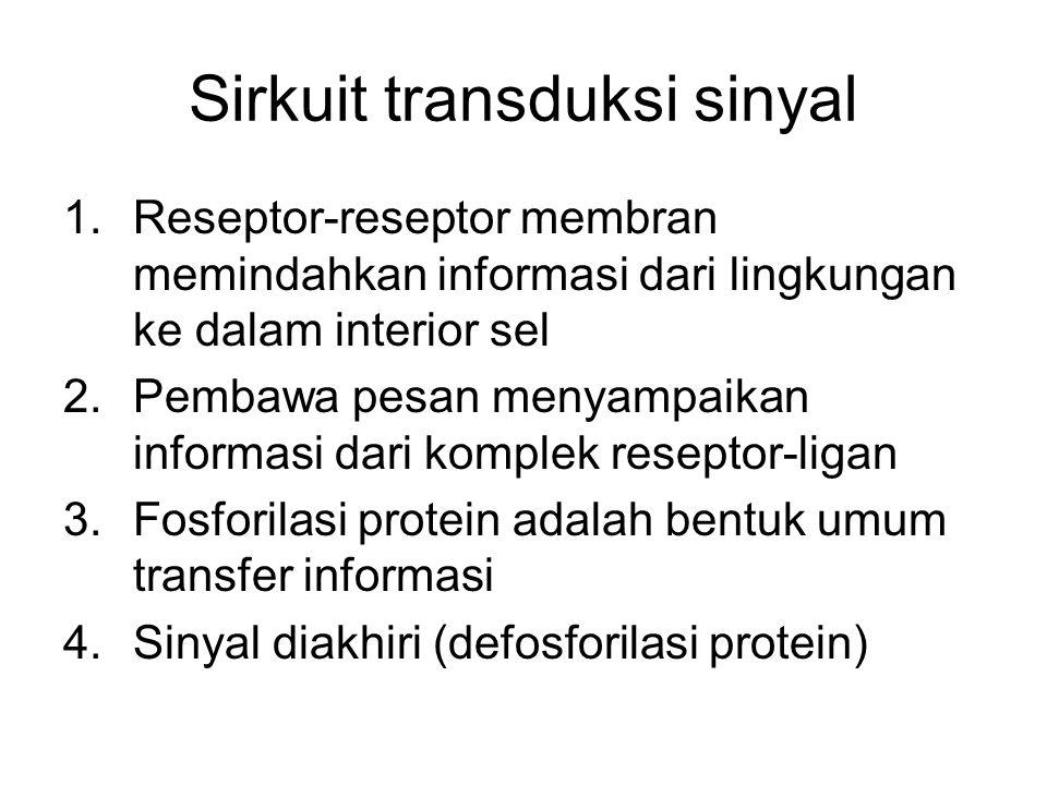 Sirkuit transduksi sinyal 1.Reseptor-reseptor membran memindahkan informasi dari lingkungan ke dalam interior sel 2.Pembawa pesan menyampaikan informa