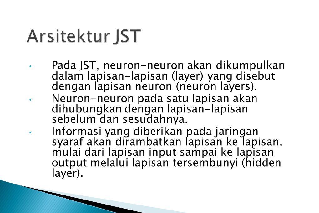 Pada JST, neuron-neuron akan dikumpulkan dalam lapisan-lapisan (layer) yang disebut dengan lapisan neuron (neuron layers). Neuron-neuron pada satu lap