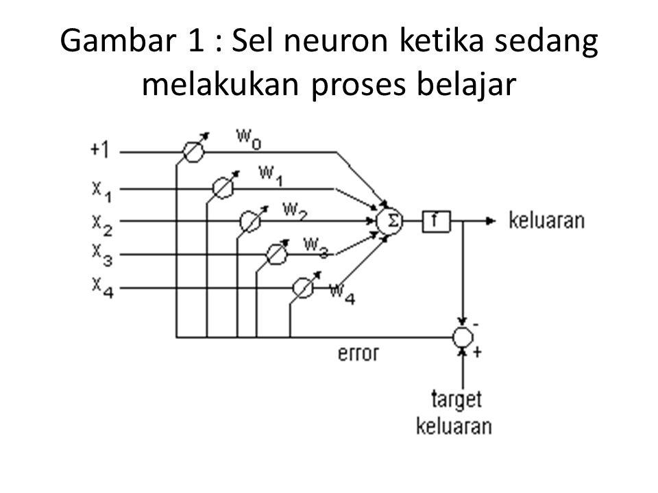 Algoritma untuk memperbaharui bobot pada neuron satu lapis adalah seperti pada bagian algoritma pemrograman JST satu lapis langkah ke-7.