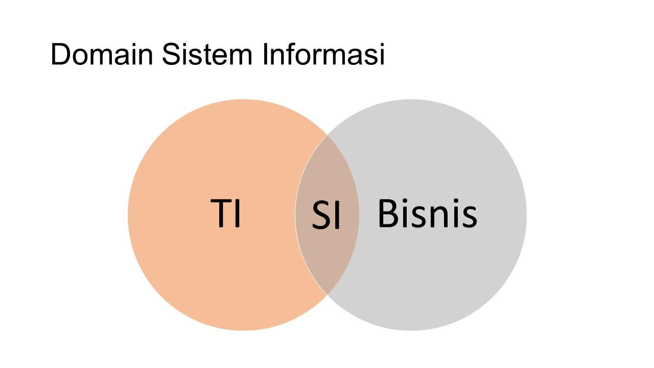 Domain Sistem Informasi TIBisnis SI