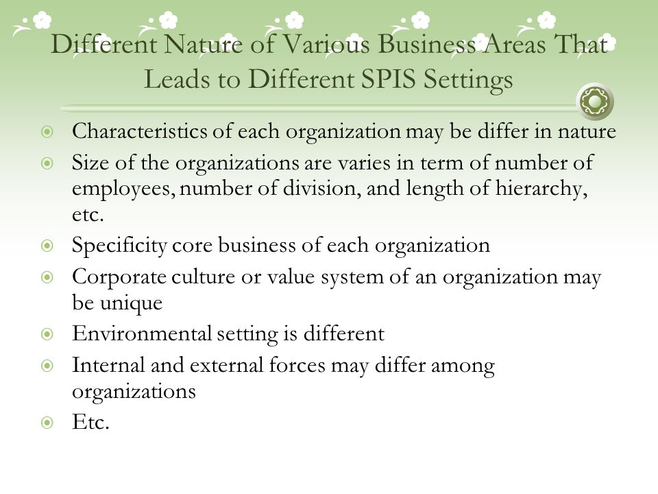 Different Nature of Various Business Areas That Leads to Different SPIS Settings  Characteristics of each organization may be differ in nature  Size